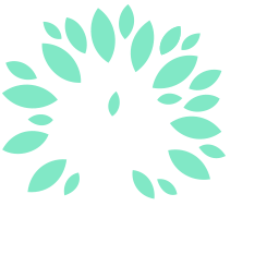 Jakin Pregnancy Choices and Loss